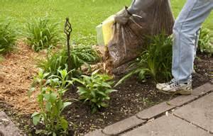 un paillage naturel pour votre jardin ol 233 o mac