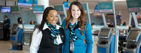 Westjet Pet Policy In Cabin by Customer Service And Guest Service About Us