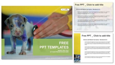 powerpoint templates veterinary medicine veterinarian checking up sick dog with stethoscope in vet