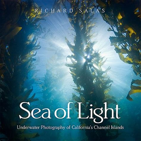 underwater photography book quot sea of light quot by richard salas