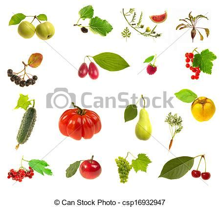 derrata alimentare archivi fotografici di derrata alimentare n 224 bianco