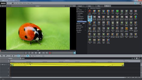 tutorial deluxefx magix video deluxe 2015 plus tutoriales