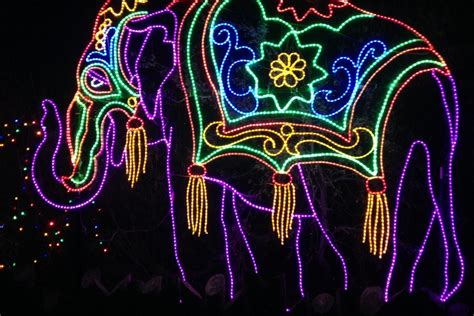 Zoo Lights South Florida Finds Metro Zoo Lights