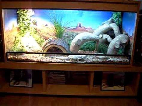 Bearded L Setup by Large Outdoor Turtle Bearded Habitat Setup