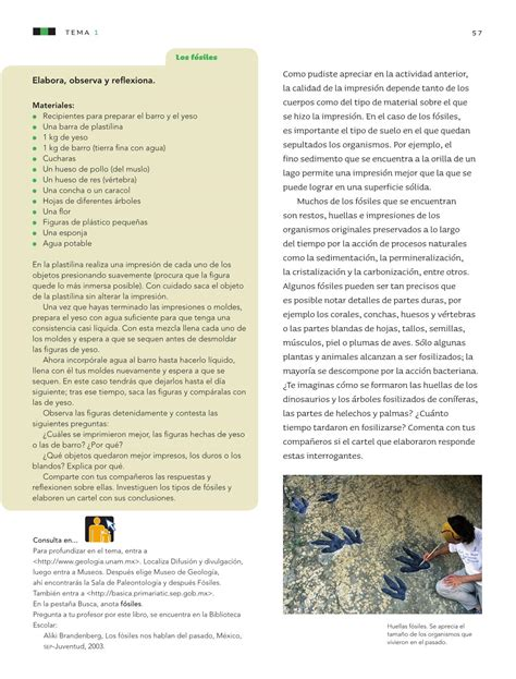 pdf libro de texto parir el poder del parto para leer ahora ciencias naturales sexto grado 2016 2017 online libros de texto online