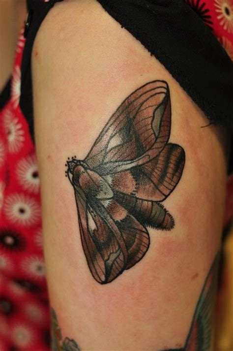 vanity tattoo 60 best images about insect tattoos on insects