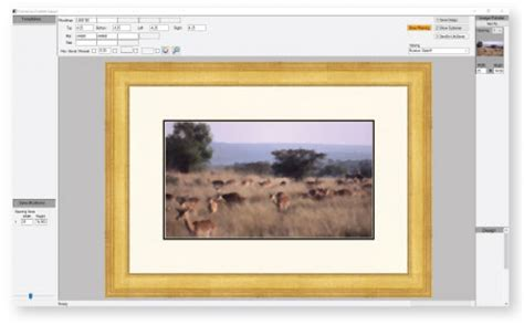 Where Can I Buy Matting For Picture Frames by Picture Frames Where Can I Buy Matting For Picture Frames