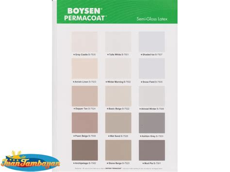 paint colors boysen paint color ideas
