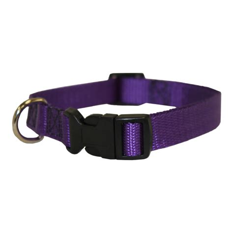 purple collars shop majestic pets purple collar at lowes
