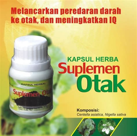 Obat Herbal Epilepsi terapi obat herbal penyakit epilepsi sehatherba