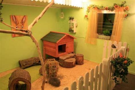 the rabbit room housing ideas a websitebuilder website