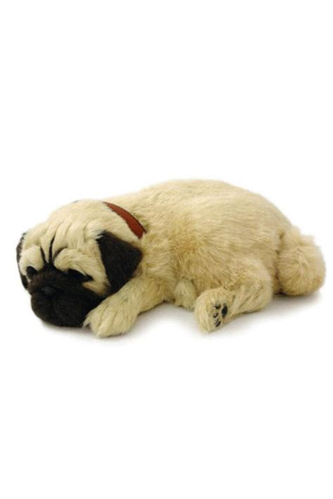 petzzz pug petzzz sleeping pug from ottawa by weaver shoptiques