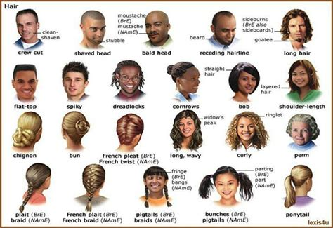 esl hairstyles english vocabulary hairstyles english vocabulary
