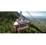 Mount Benson Gondola Talk Gets Off The Ground  NanaimonewsNOW