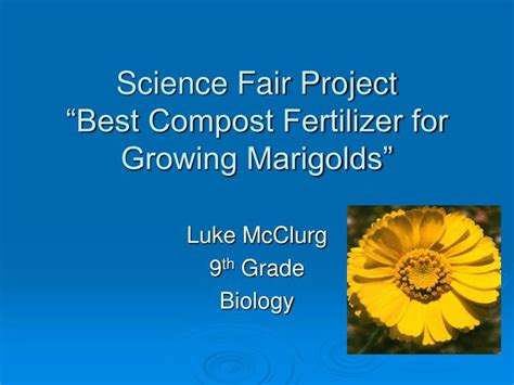 ppt science fair project best compost fertilizer for