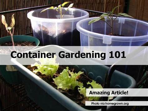 container gardening 101 container gardening 101