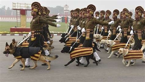 ktsf 26 new year parade in pics army dogs to march on republic day parade after