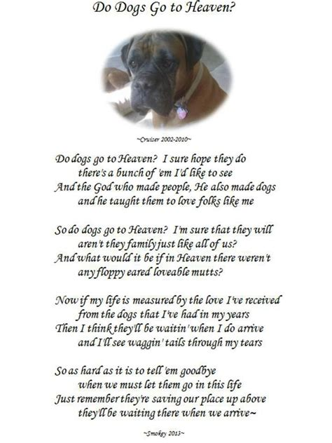 do all dogs go to heaven grieving the loss of your pet books 369 best images about heaven and pet loss on
