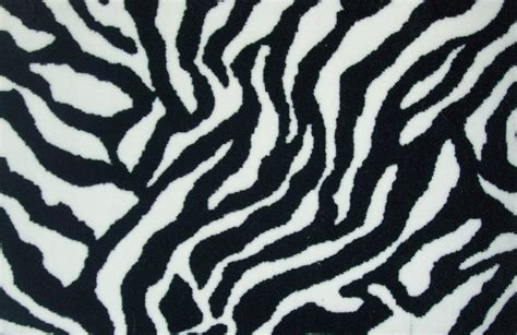 zebra print animals