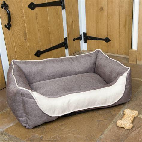 Comfort Sofa Bed Hound Comfort Sofa Bed By Noah S Ark Notonthehighstreet