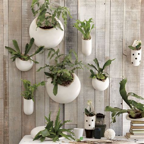 Objects Of Design Ceramic Wall Planters Wall Garden Pots