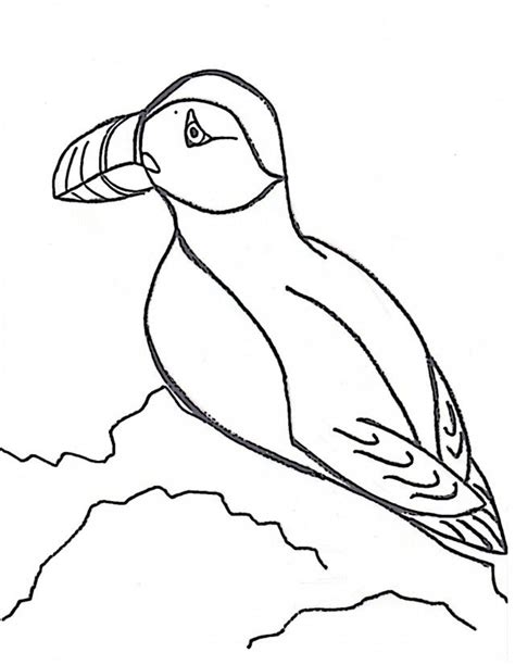 puffin coloring page az coloring pages
