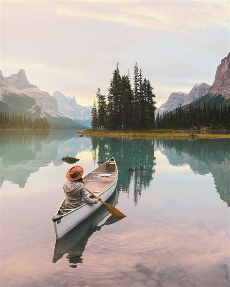 canoe puppies best 25 canoeing ideas on golden retrievers retriever puppies and golden