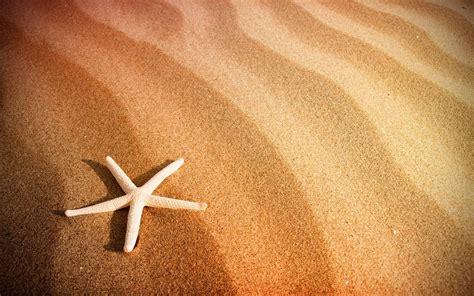 beach sand starfish wallpaper hd beach wallpapers