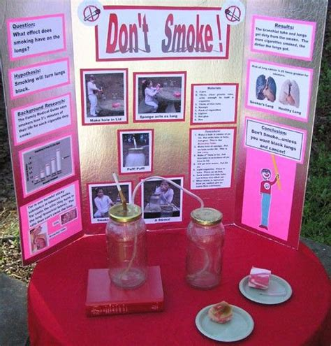 quot don t smoke quot science fair project science