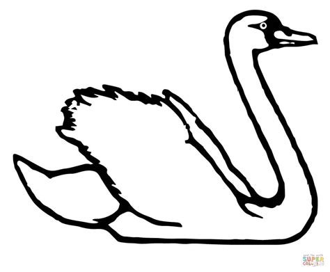 swan coloring pages trumpeter swan coloring page free printable coloring pages