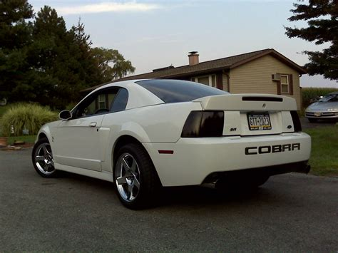 mustang cobra 2003 2003 ford svt mustang cobra coup 233 related infomation