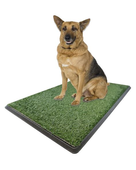 potty pad indoor doggie bathroom x large potty pad indoor outdoor doggie bathroom 24 95