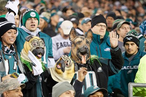 philadelphia eagles fan eagles fans to outnumber patriots fans at bowl lii