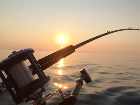 best pesca best spinning reels reviewed tested in 2018