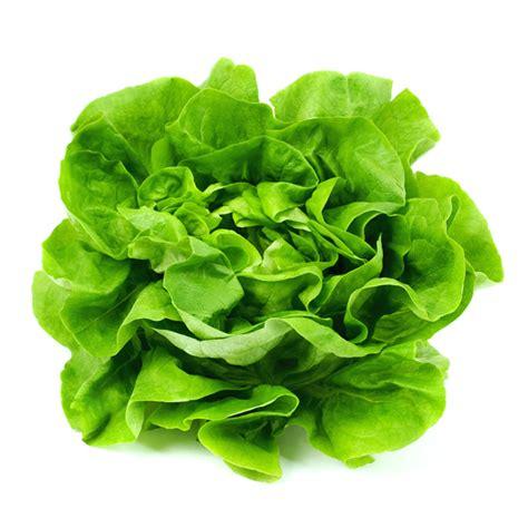 la lattuga propriet 224 e benefici nutrizionali dieta