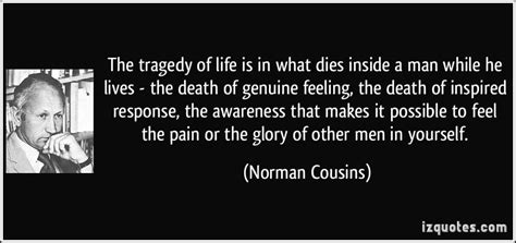 quotes about cousins quotesgram