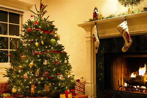 real christmas trees blackwood real christmas trees