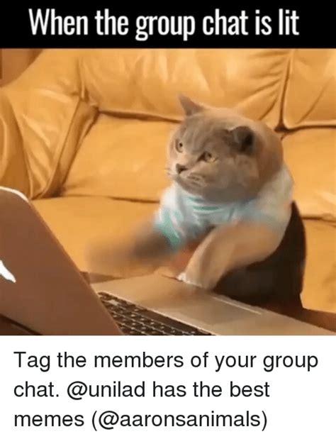 Meme Chat - search lit memes on sizzle