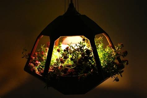 terrarium beleuchtung led led le terrarium deptis gt inspirierendes design