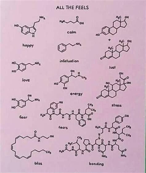 chemical structure tattoo best 25 chemistry ideas on biology