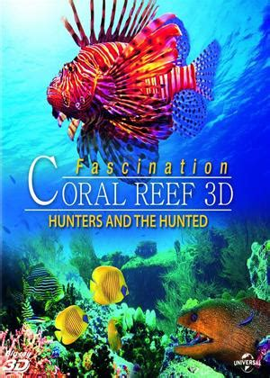 coral reef adventure 2003 for rent on dvd rent fascination coral reef 3d hunters and the hunted 2012 film cinemaparadiso co uk