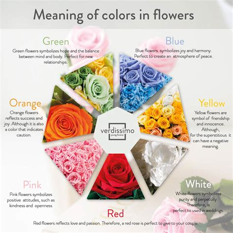 definition of colors the meaning of roses according to their colour verdissimo