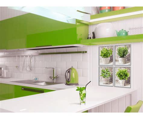 spezie cucina spezie da cucina fiori piante quadro per tema www