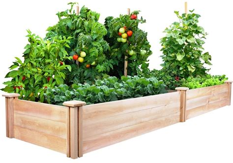 vegetable gardening with raised beds corner
