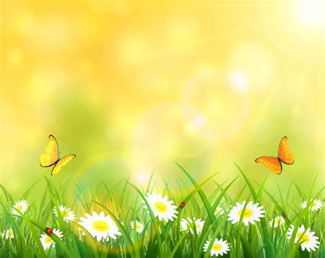 Sunny background with grass and flowers vector design