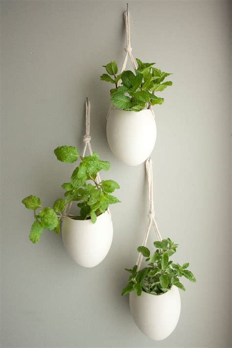 Unique Plant Pots 4 unique garden amp indoor plant ideas for your wedding