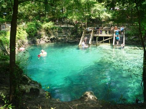 boat rides near gainesville fl the 12 best springs in florida to visit right now