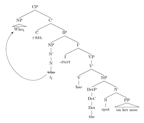 syntactic tree diagram generator syntactic tree diagram generator 28 images syntactic