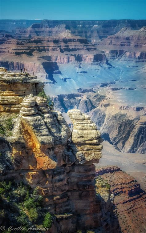 grand address in arizona grand national park coconino county arizona
