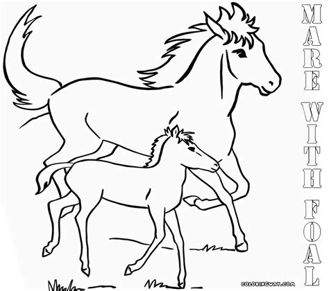 coloring pictures of baby horses baby horse coloring pages coloring pages to download and